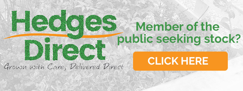Hedges Direct - Grown with Care, Delivered Direct