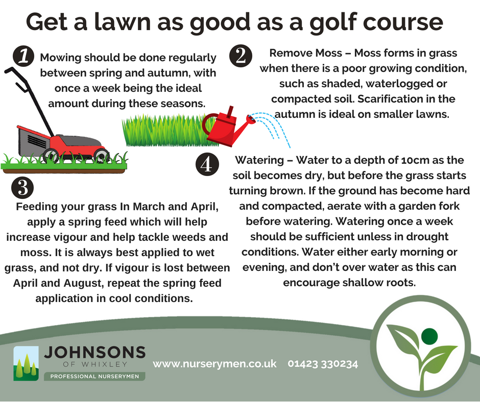 Get a lawn as good as a golf course