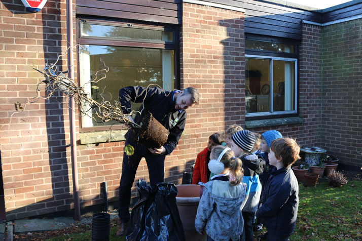 Pupils get planting for National Tree Week