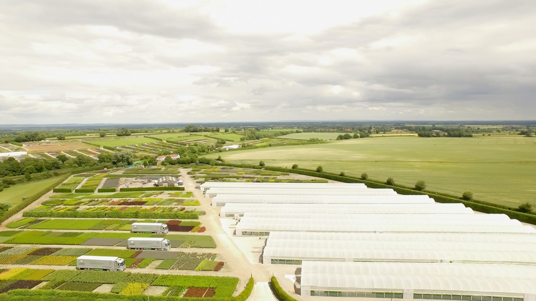 Proud to have sold 220 million plants during our century of business