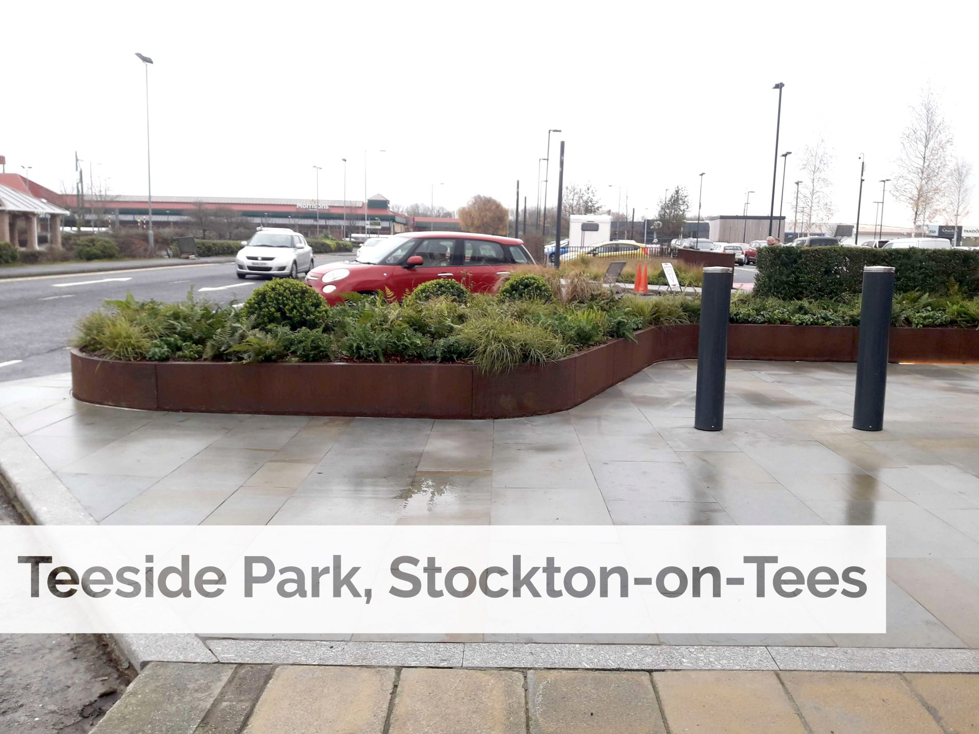 Plant supply to help create green oasis at Teeside Park