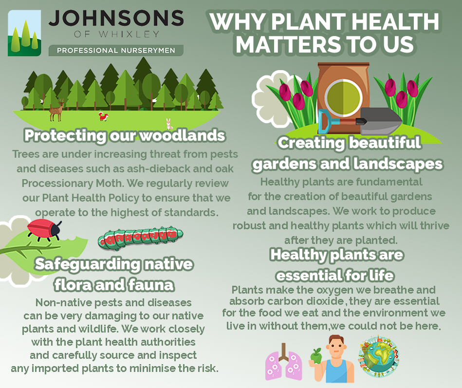 Why Plant Health matters to us