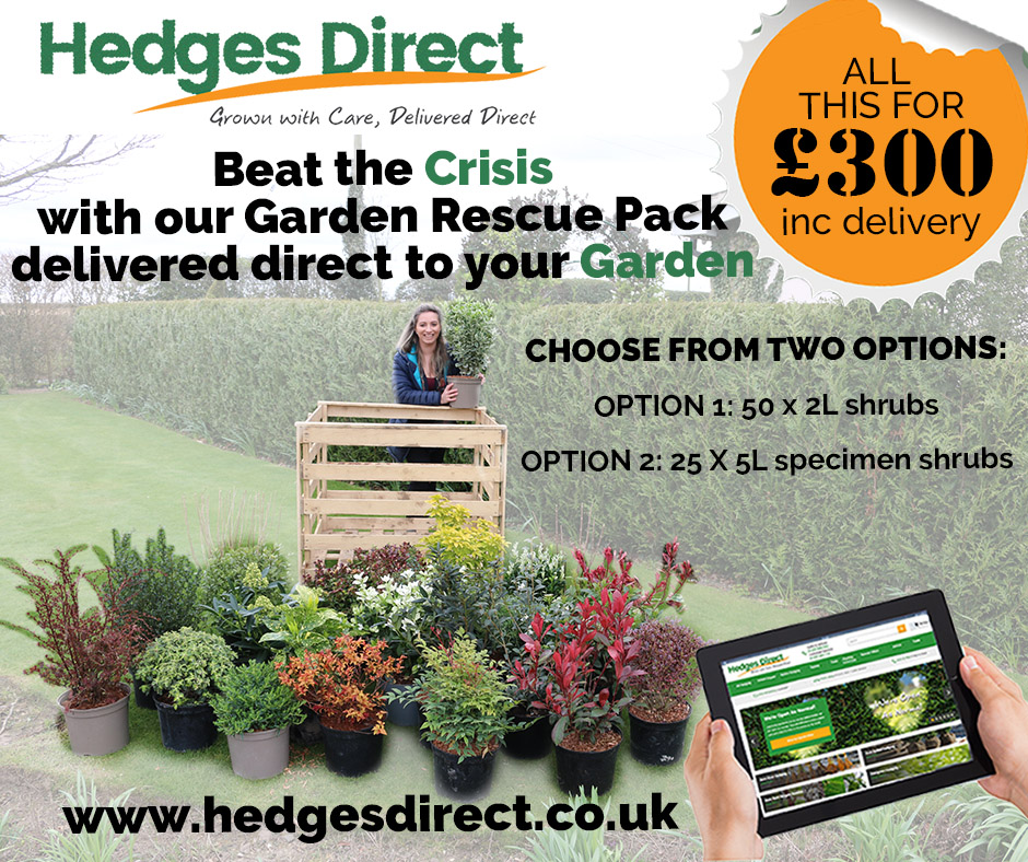 Teaming up with Hedges Direct to deliver garden plants to your door