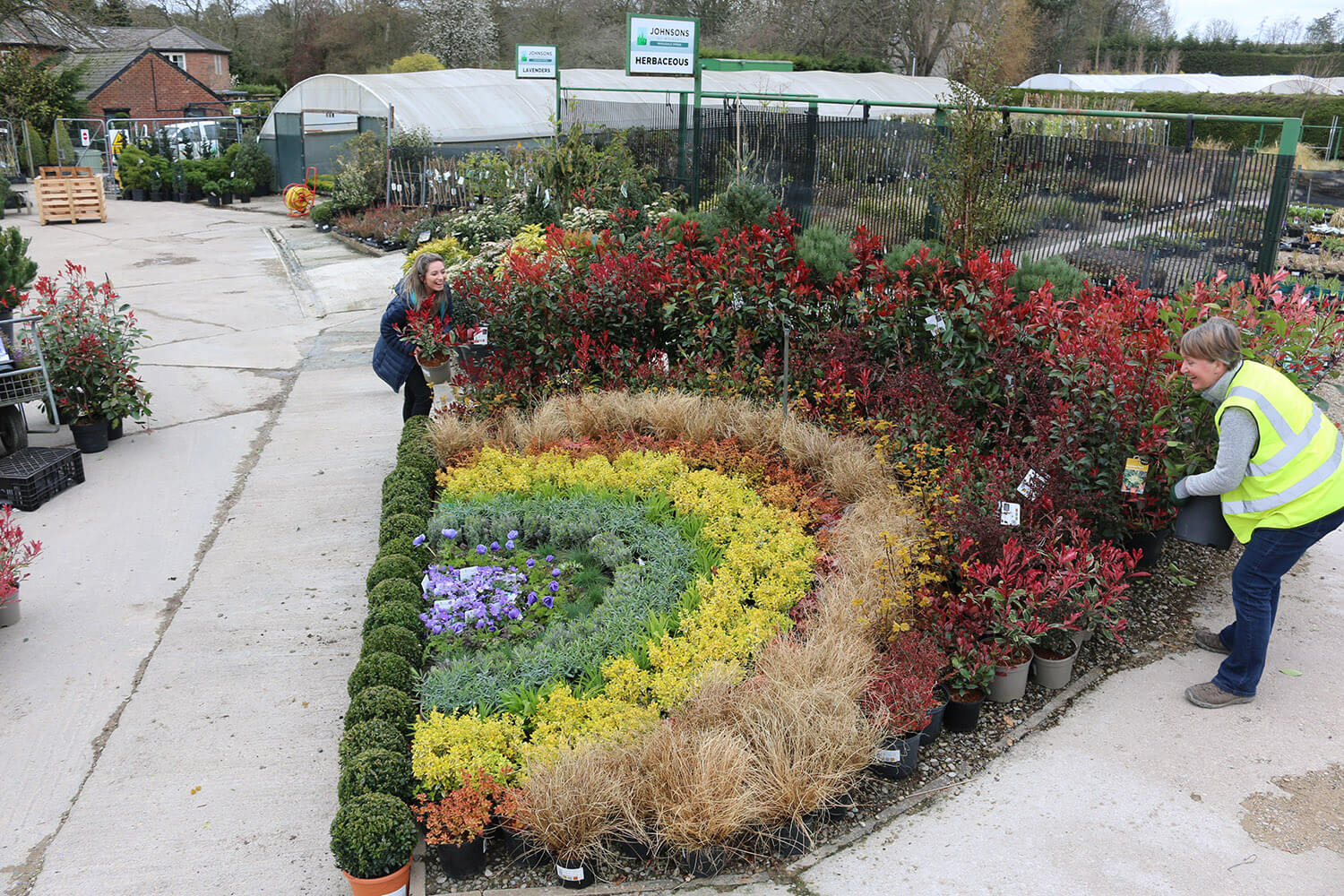 Creating a rainbow of plants for hope with Garden Designer Helen Taylor