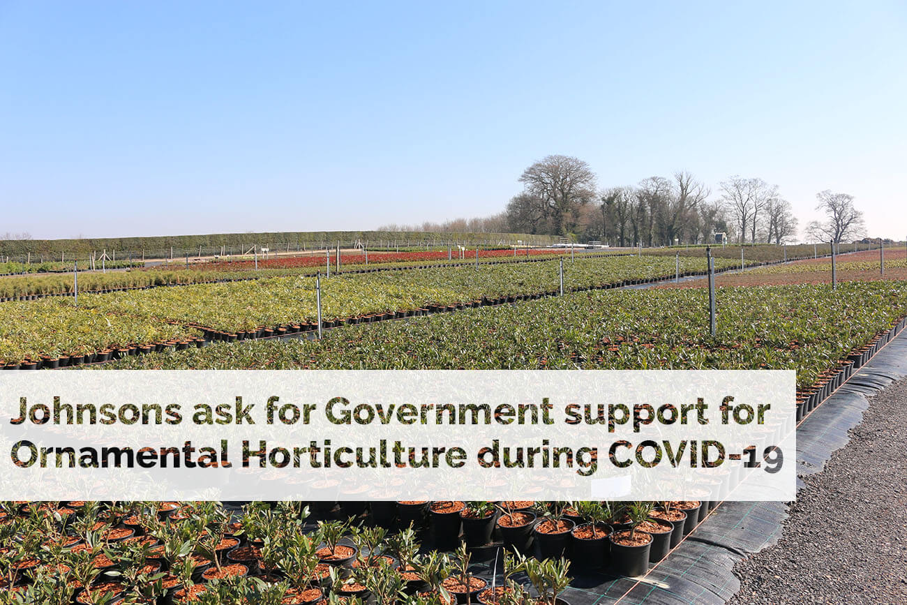 Johnsons ask for Government support for Ornamental Horticulture during COVID-19