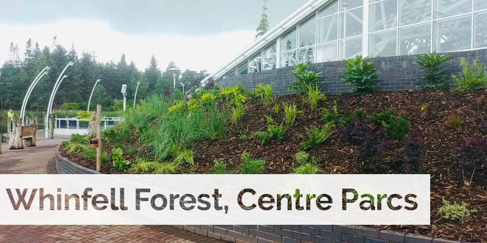 Plant supply for Whinfell Forest Center Parcs new look