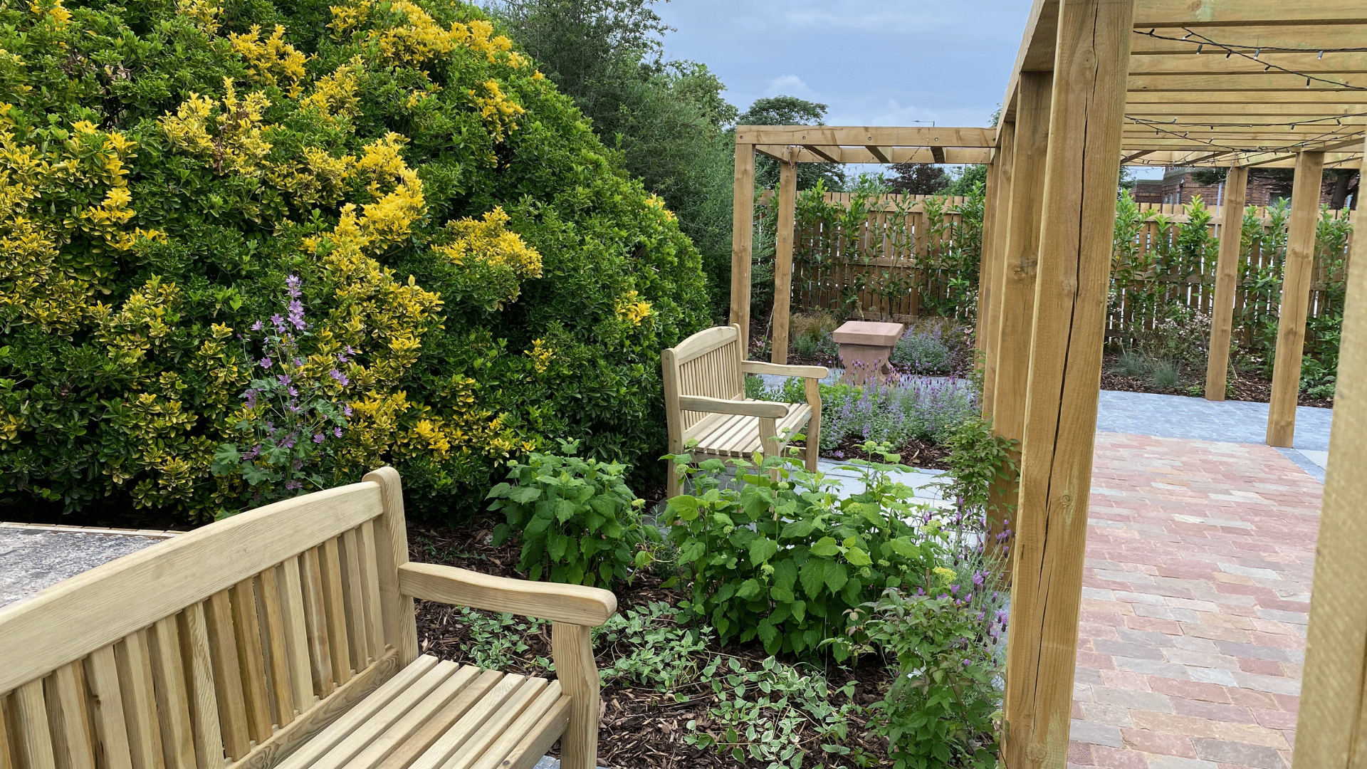 Plant donations see NHS hospital gardens bloom