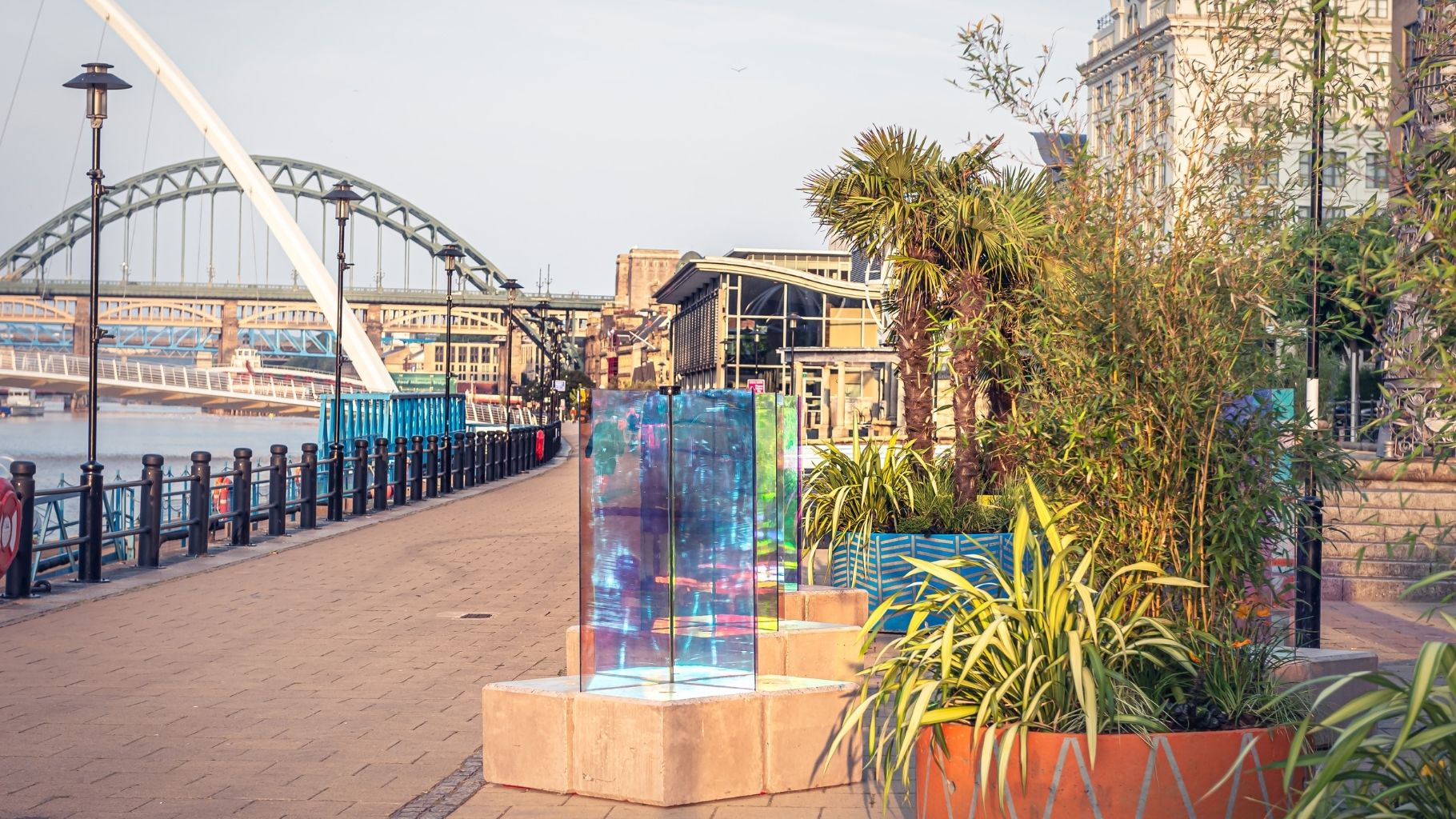 Planters bring iconic Quayside to life this summer