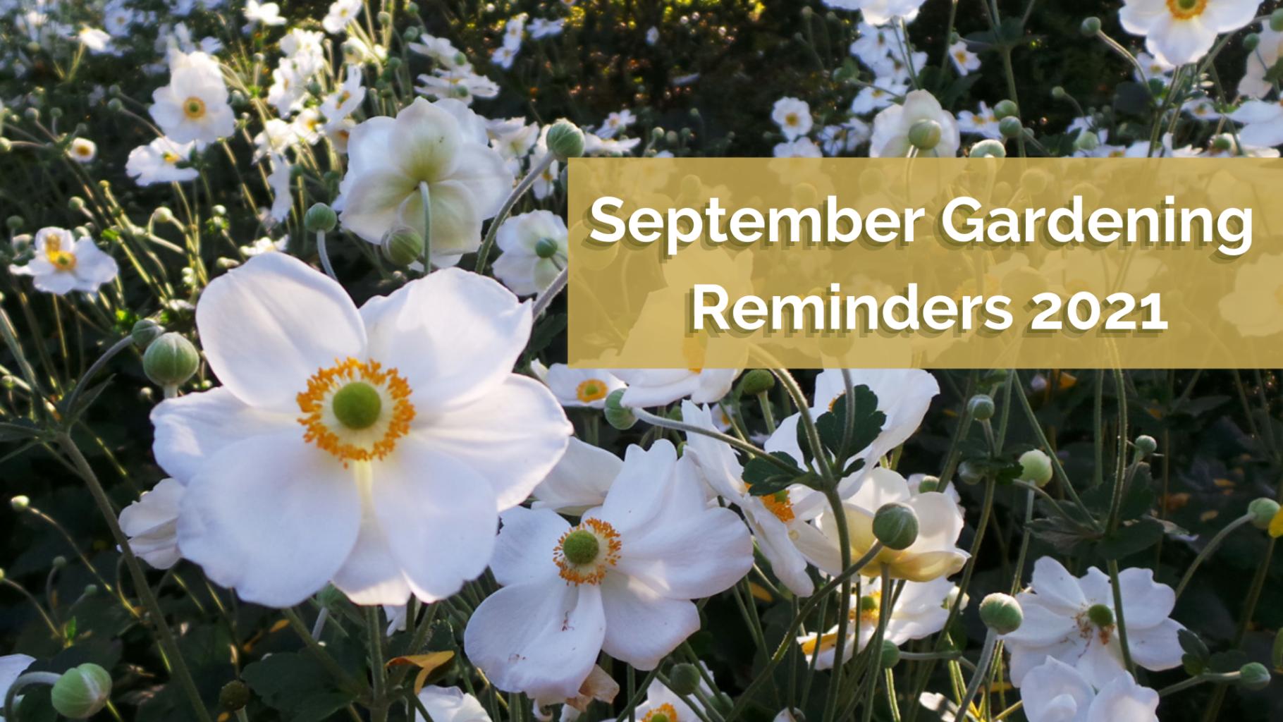 September Gardening Reminders 2021